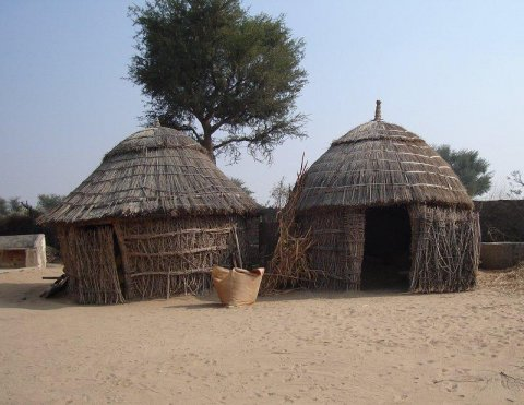 Thatched Indian Huts